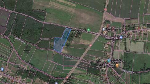 Do sprzedania działka 2,33 ha w Kuźniczysku powiat Trzebnicki