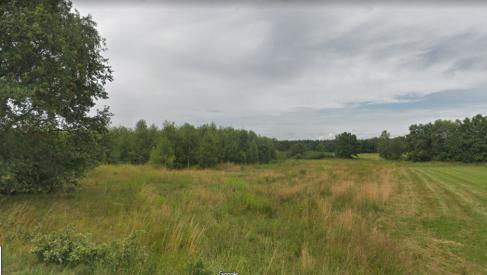 Do sprzedania ziemia rolna o powierzchni 6.1 hektara w Olszówce gmina Twardogóra oferta bez prowizji dla biura nieruchomości